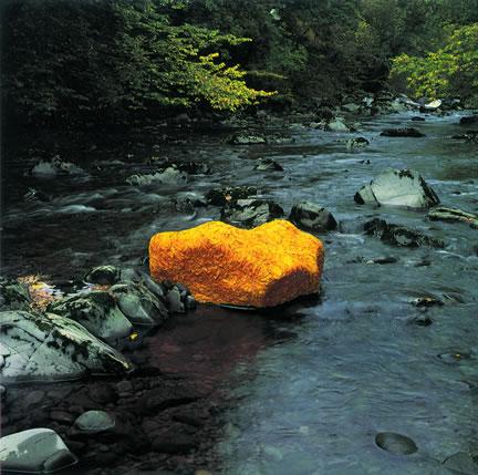 goldsworthy leaf covered rock